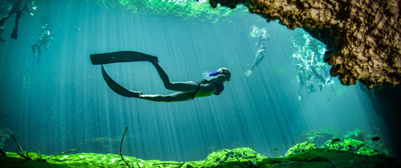 Freedive